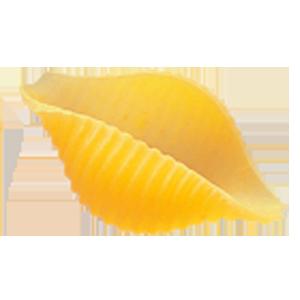 Coquillage